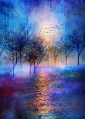 landscape fineart nature colours trees