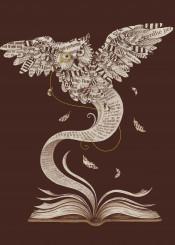 book owl wisdom