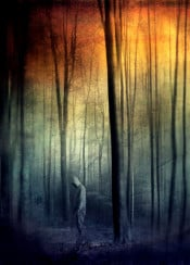 surreal forest blur colors forest trees landscape light manipulation textures photograph mysterious