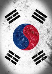 south korean flag taegukgi vintage distressed
