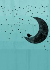 moon stars bird sky turquoise kakel