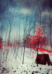 winter snow fantasy birds leaves painterly impressionistic romantic red blue white