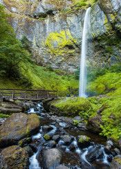 oregon waterfall moss mossy bridge