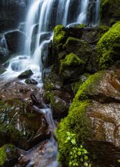oregon waterfall cascade moss mossy fairytale