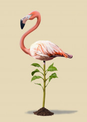 flamingo bird avian plant pink green standing animal nature feathers leaves