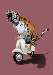 tiger cat wildlife india vespa bike motorcycle riding stripes animal drawing illustration orange