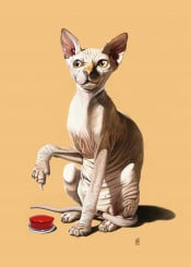 cat feline sphinx paw button catastrophe fur animal red skin