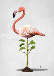 flamingo bird avian plant pink green leaves feathers standing