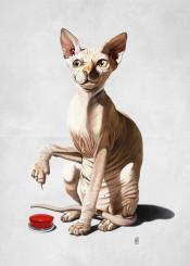 illustration creative art design pencil photoshop animal nature sketch cat button catastrophe