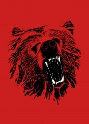 bear animal grizzly angry unique illustration nature forest grizzly bear mad wild