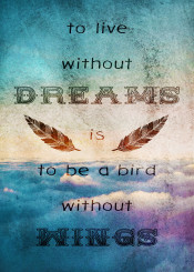 dverissimo dream dreamer bird fly clouds dreaming fantasy sky wings