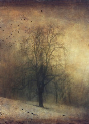 winter vintage mood atmosphere tree snow textures birds melancholy haze landscape