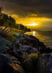 background backgrounds bay beautiful beauty cloud cloudy coast dawn forest green horizontal idyllic