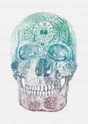 skull death life time clock patterns nature surreal