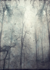 monochrome haze mood painterly trees forest mystical birds eerie silhouettes