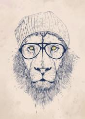 lion animal hipster hat glasses portrait blue humor funny