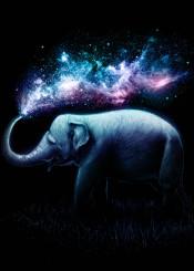 elephant animals space night sky stars universe splash sprinkle digital paint