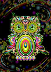 owl psychedelic doodle bird animal popart surreal digital graphicart fantasy rainbowcolors swirls