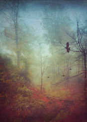 misty fall autumn painterly birds mystical fog mood atmosphere silhouettes valley trees