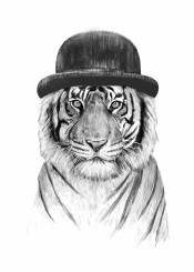 tiger animal black white drawing portrait humor funny hat london