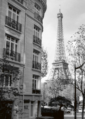 paris eiffel tower tower black and white picture france street light french culture built str