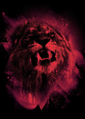 lion cosmic astrology wild animals space stars king