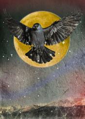 collage origin night moon crow indigo totem yellow black paper natural stars force flight sky retro