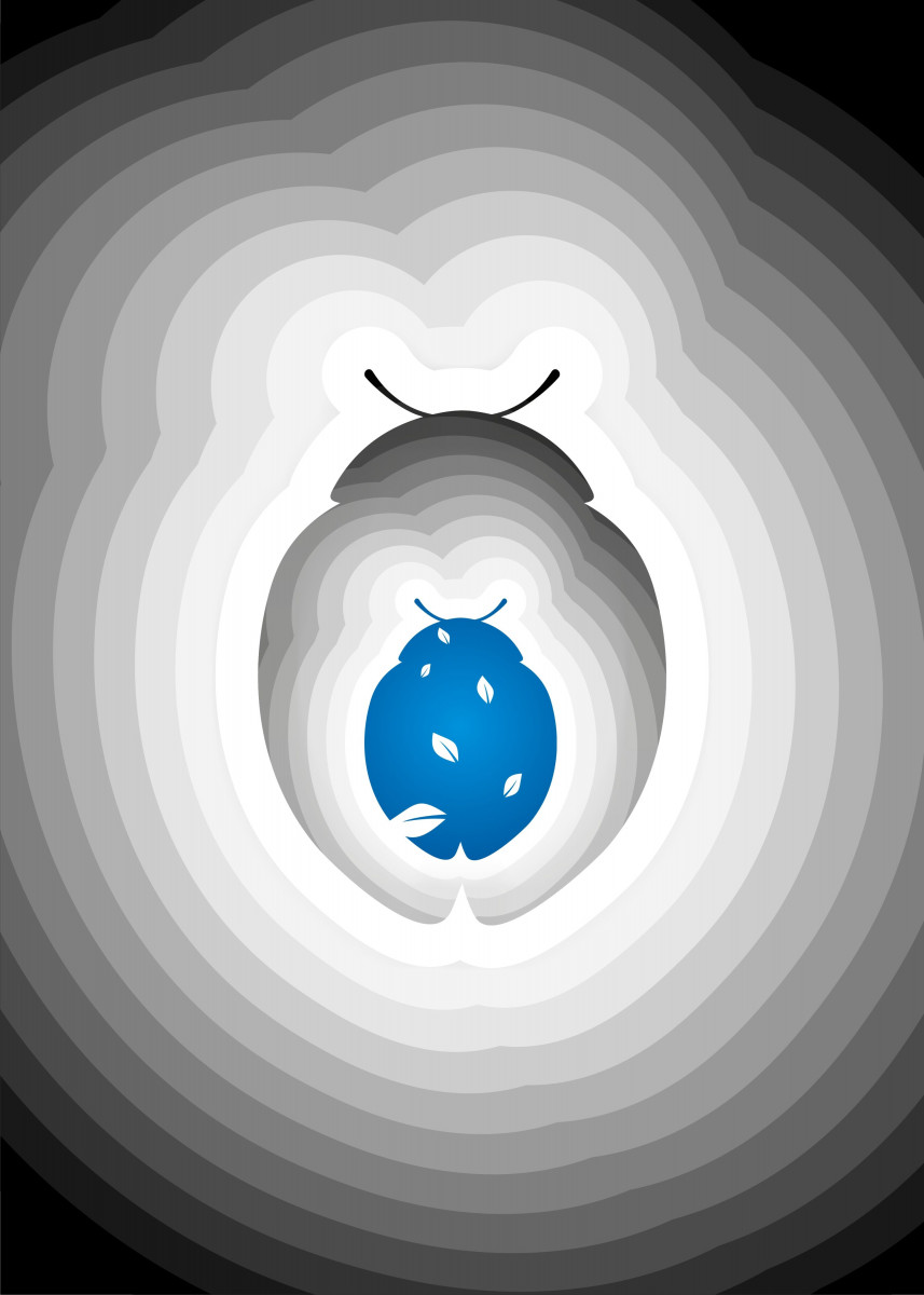 Lady Bug 92911