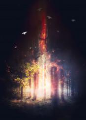 alley autumn dark darkness day empty evil fall fantasy fog foggy footpath forest grass hazy horror