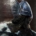 Nordic Warrior
