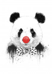 clown panda animal grunge humor funny drawing illustration