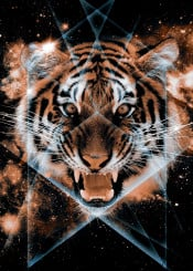 animals tiger stars space abstract retro lines growl nebula face stripes cat wild surreal