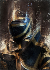 dark cavalier knight sir armor lord paladin chevalier king golden rim man soldier concept for him