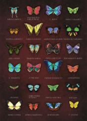 butterflies collage surreal dark vintage antique set colorful chic decor victorian cozy old intense