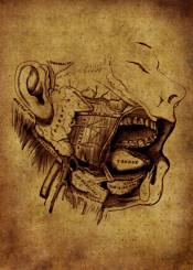 anatomic anatomy head vintage grunge red brune ilustration mouth