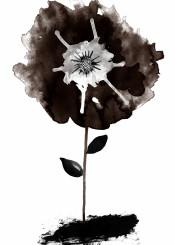 blackandwhite black flowers ink drawing
