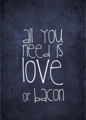 love need bacon food bbq funny quote fun humor blue navy baconlove popular new burger food kitchen