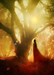 nature forest woman red magical fine art illustration