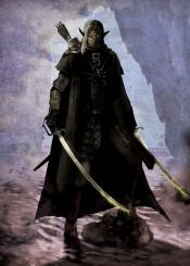 dark elf archer swords ranger shadowdancer