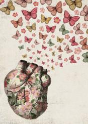 love heart rose butterfly