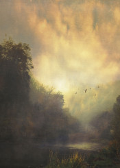 river mood sunrise water forest fog mist birds painterly valley nature