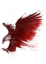 eagle fly animal flying throttle bend the throttle unique illustration bird blood
