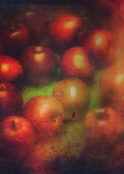 color photograph vintage red apples nostalgia texture old fruits still life light food passion love