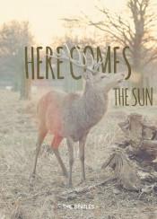 beatles music lyric sun nature landscape forrest magical song deer