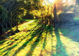 geometry nature photography digital green visionaryarts portal trippy