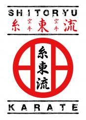 shitoryu karate martialarts martial art japanese fighter