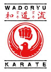 wadoryu karate martialarts martial art fighter japanese