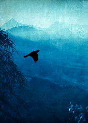 bird blue landscape mountains alps tree valley haze soft light atmosphere view silhouettes