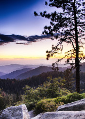 sequia view beautiful amazing trees mountains sky sunset hdr