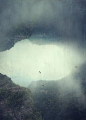 manipulation photography mountains forest birds surreal misty view backlight outdoor texture
